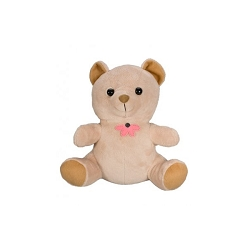 Hardwired Teddy Bear Color Camera