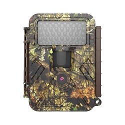 Covert Scouting Camera NBF20
